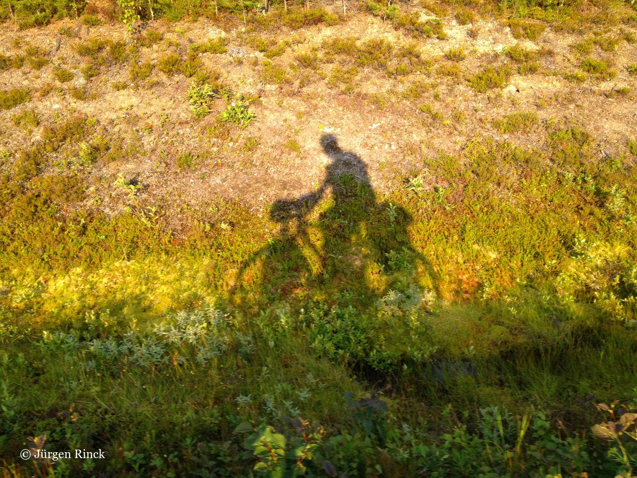 Schatten einer Radfahrers im Profil auf gelbgrünem Straßenrand.